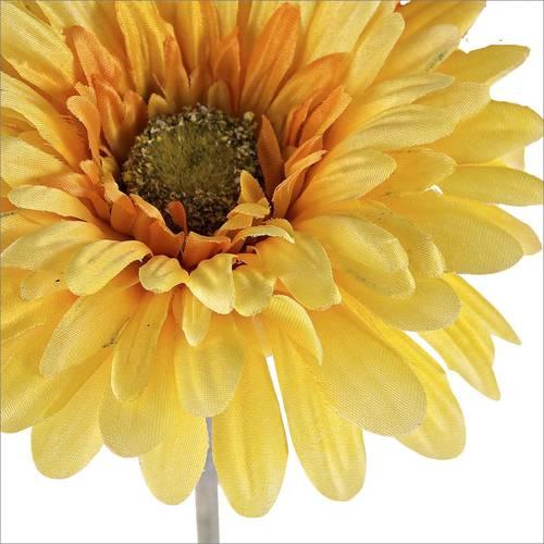 Fiore gerbera gialla 56h