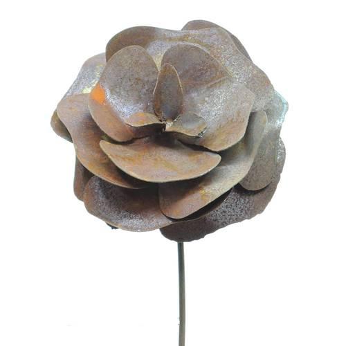 Rosa su stelo ferro ruggine 68h
