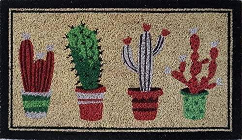 Zerbino cocco da ingresso dipinto 4 vasi piante cactus