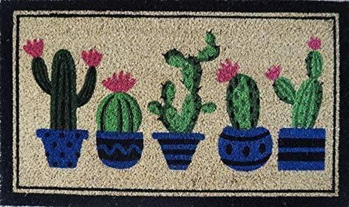 Zerbino cocco da ingresso dipinto 5 vasi piante cactus