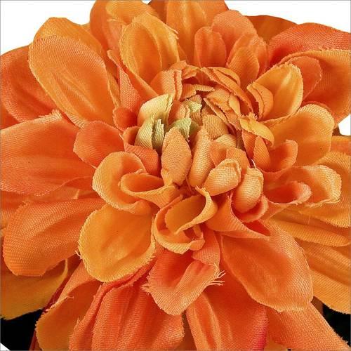 Fiore dalia arancio 36h