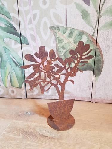 Sagoma pianta crassula 37h ferro ruggine da giardino